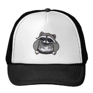 Raccoon Popout Funny Hat