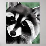 Raccoon Poster Art Print