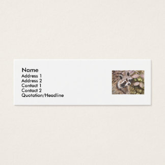 Raccoon  prpfile/business card