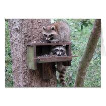 Raccoon Rascals Card