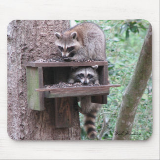 Raccoon Rascals Mousepad