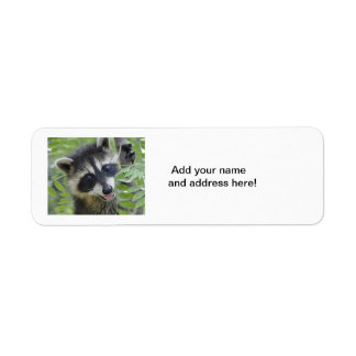 Raccoon Return Address Labels