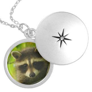 raccoon round locket necklace