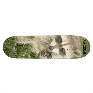 Raccoon Skateboard
