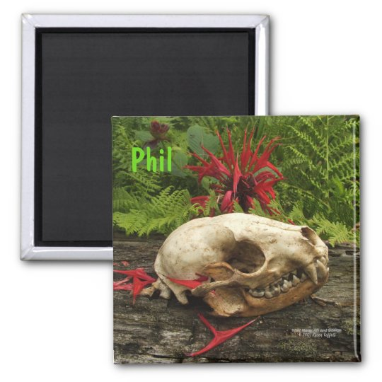 Raccoon skull old log with ferns and red Monarda Magnet