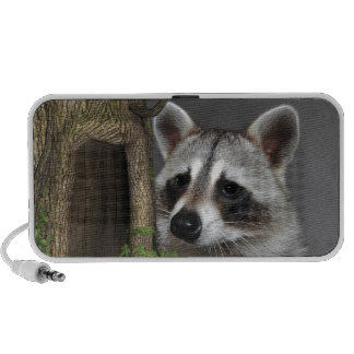 Raccoon Speaker System