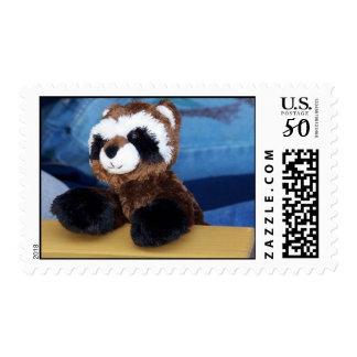 raccoon stamp