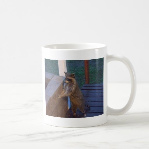 Raccoon Standing on Back Porch Classic White Coffee Mug