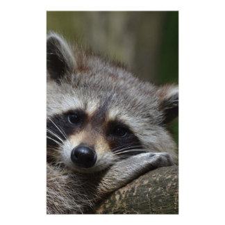 Raccoon Customized Stationery