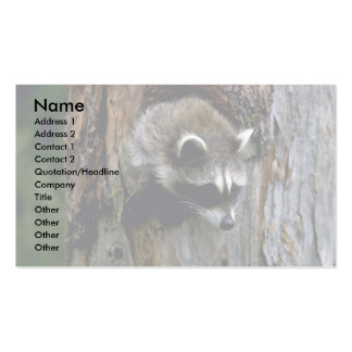 Raccoon-Summer-youngster in hollow tree Business Card Template