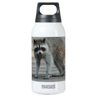 Raccoon Thermos Bottle
