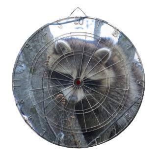 Raccoon treed dartboard