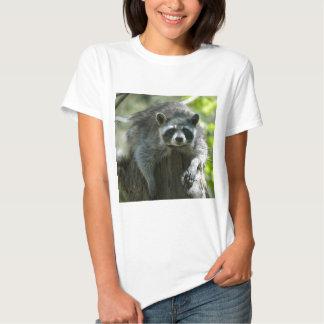 Raccoon Tshirt