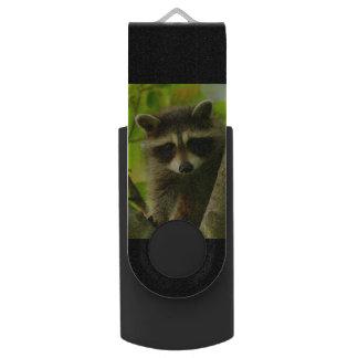 raccoon USB flash drive