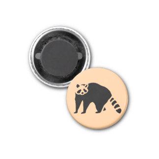 Raccoon Vintage Wood Engraving 1 Inch Round Magnet