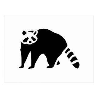 Raccoon Vintage Wood Engraving Post Card