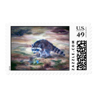 Raccoon What That Postage
