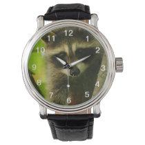 raccoon wrist watch