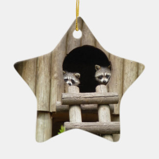 Raccoons Ceramic Ornament