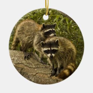 Raccoons! Ceramic Ornament