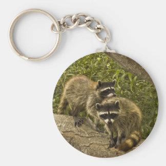 Raccoons Keychain