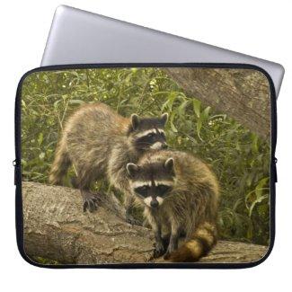 Raccoons Laptop Computer Sleeve