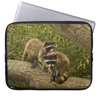 Raccoons Laptop Sleeve