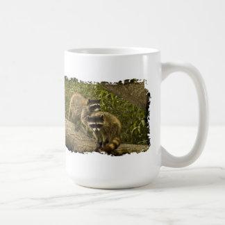 Raccoons on Grunge Coffee Mugs