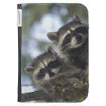 Raccoons Procyon Lotor) of Fish Lake, Central Kindle 3G Cover