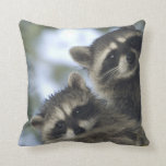 Raccoons Procyon Lotor) of Fish Lake, Central Throw Pillow