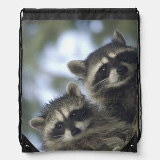 Raccoons Procyon Lotor of Fish Lake Central Cinch Bag
