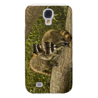 Raccoons Samsung S4 Case
