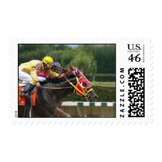 race-horse-8 stamp