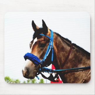Race horse mouse pad