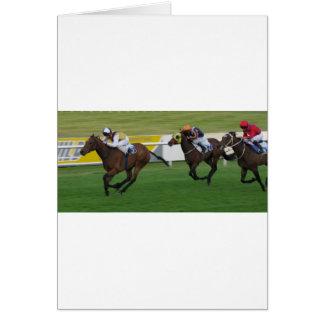 race horse, racing sports card
