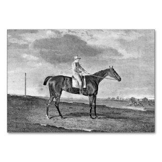 Race Horse Vintage Art Table Cards