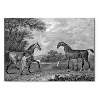 Race Horses Black and White Table Cards