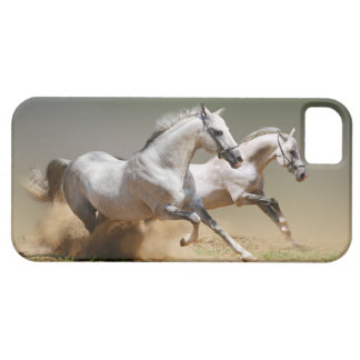 Race The Wind Horses iPhone 5 Cases