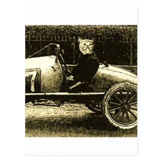 Racecar cat postcard