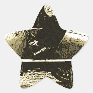 Racecar cat star sticker