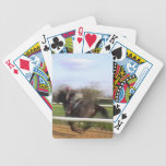 Racehorse Playing Cards