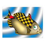 Racer Fish Postcard