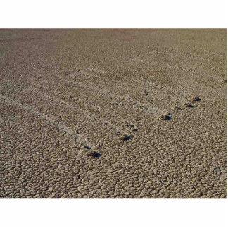Racetrack Playa Mud Tracks Photo Cutout