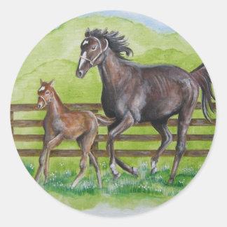 Rachel Curlin Colt Round Sticker