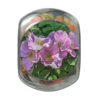 Racimo color de rosa salvaje frascos de cristal jelly belly