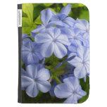 Racimo de flor azul encantador