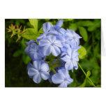 Racimo de flor azul encantador felicitaciones
