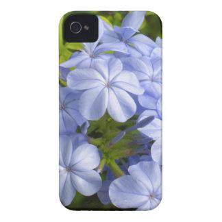 Racimo de flor azul encantador iPhone 4 Case-Mate fundas