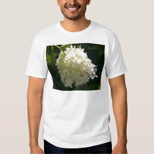 Racimo de flor blanco del Hydrangea Playera