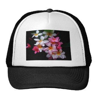 Racimo de flor brillante del rosa de la primavera gorras